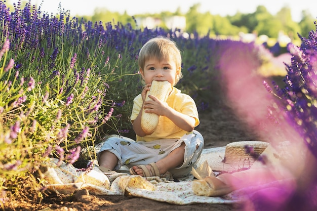 Mignon petit bébé assis sur une couverture avec de la nourriture pour pique-niquer dans un champ de lavande