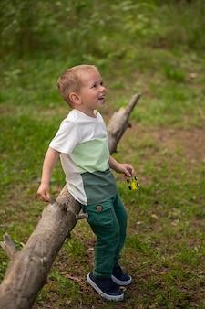 Mignon petit garçon d'années jouant avec une petite voiture sur une bûche dans la forêt