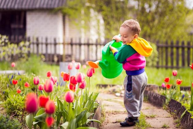 Mignon petit garçon arrosant des fleurs
