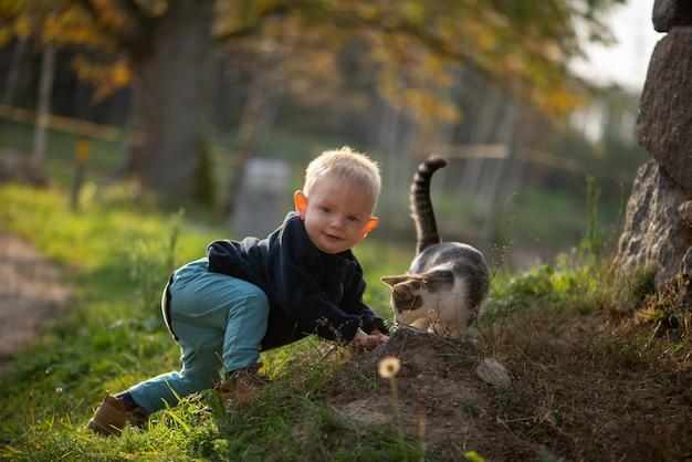 Mignon petit garçon et chat domestique jouant en plein air