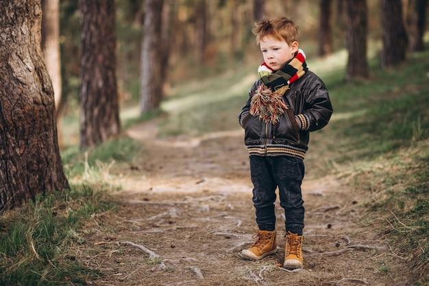 Mignon petit garçon dans la forêt seul