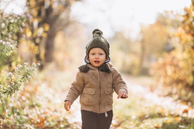 Mignon petit garçon dans un parc en automne