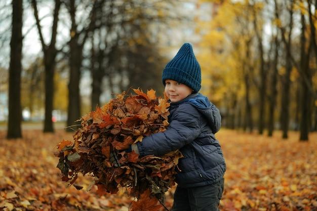 Mignon petit garçon debout sur la ruelle dans un parc avec un tas de feuilles jaunes tombées dans ses mains
