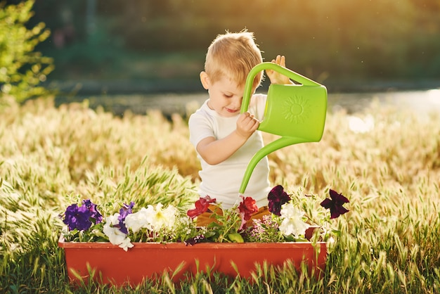 Mignon petit garçon enfant arroser les semis de fleurs dans un pot dans le jardin au coucher du soleil. petit jardinier amusant. concept de printemps, nature et soins.