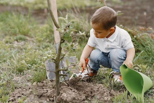 Mignon petit garçon plantant un arbre dans un parc