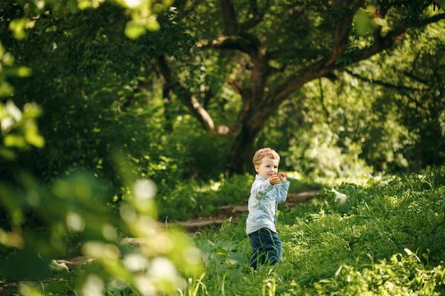 Mignon petit garçon s'amusant en été