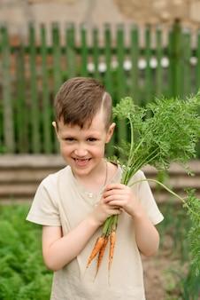 Mignon petit garçon tenant un bouquet de carottes biologiques fraîches