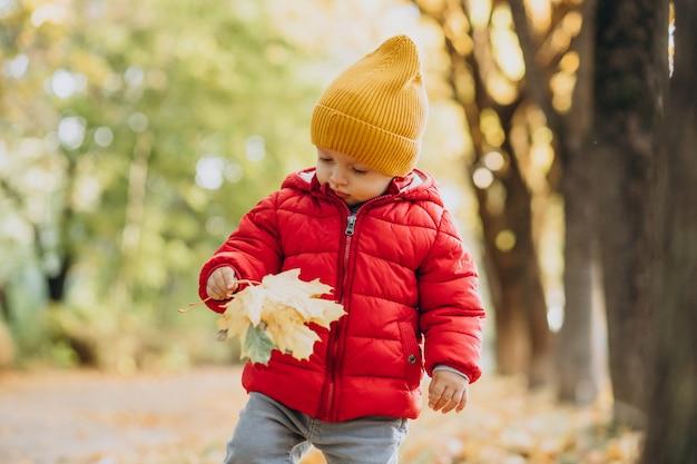 Mignon petit garçon en veste rouge dans le parc automnal