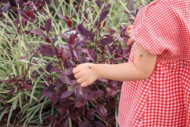 Mignonne petite fille asiatique a une éruption cutanée et une allergie due à une piqûre de moustique et à sucer du sang tout en jouant en plein air