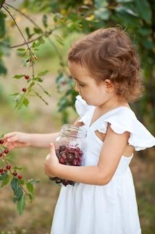 Mignonne petite fille dans une robe blanche cueillant une cerise dans un jardin et mange. moment de la récolte.