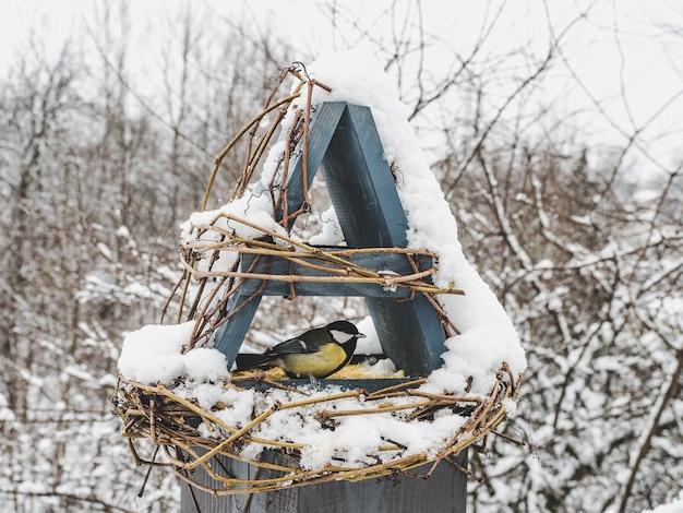 Mignons et beaux oiseaux dans une mangeoire en osier. gros plan, à l'extérieur. lumière du jour. concept de soins des animaux
