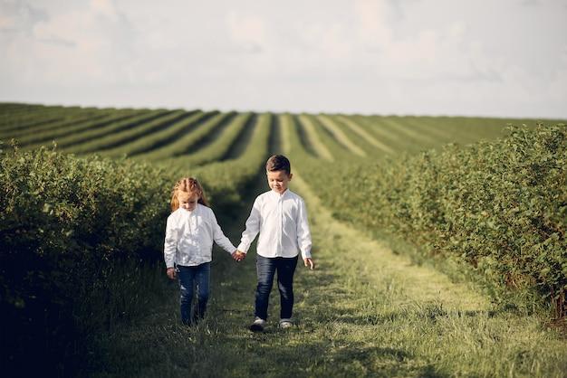 Mignons petits enfants dans un champ de printemps