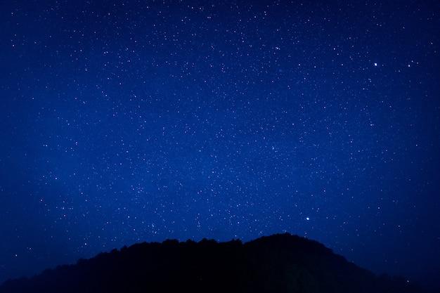 Des millions d'étoiles brillent dans l'obscurité du ciel sur fond de belle nature.
