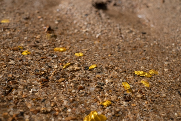 Minerai de pépite d'or pur trouvé dans la mine avec des sources d'eau naturelles