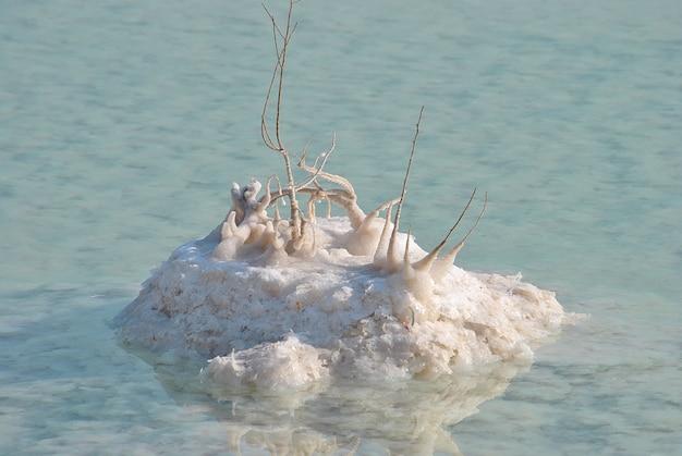 Les minéraux et le sel de la mer morte israël
