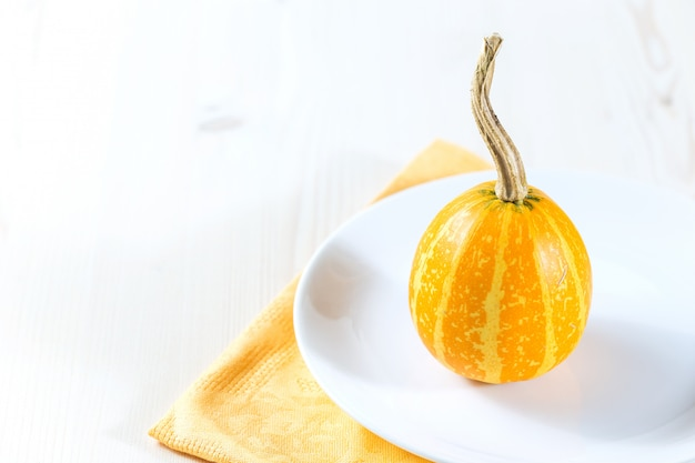 Mini citrouilles
