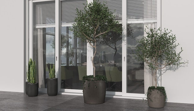 Minimalisme architecture moderne design soleil et couleur blanche avec grande fenêtre. plantes d'oliviers et de pots. rendu 3d. illustration 3d.