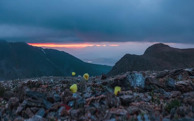 Mise au point sélective. l'aube dans les montagnes. paysages naturels colorés avec coucher ou lever de soleil. paysage atmosphérique avec des silhouettes de montagnes avec des arbres sur fond de ciel d'aube orange.