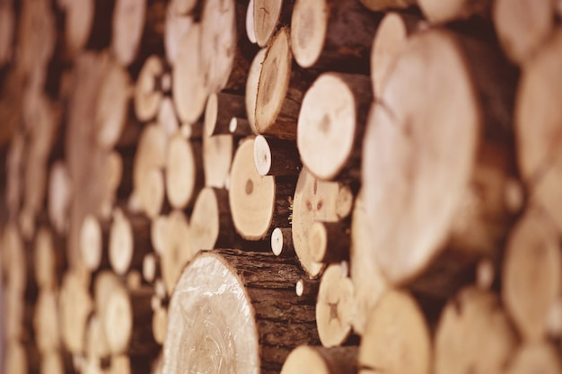 Mise au point sélective du bois d'arbre empilé sous les lumières