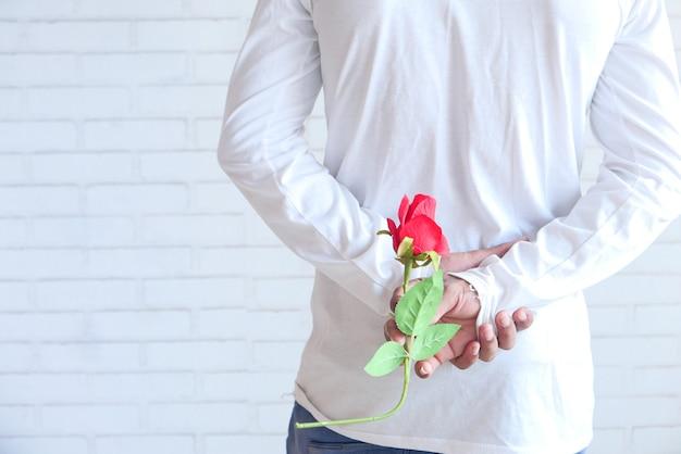 Mise au point sélective. main de l'homme tenant une fleur rose sur fond blanc