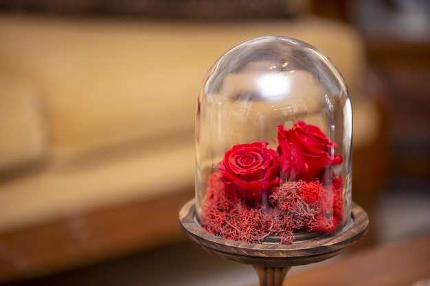 Mise au point sélective des petites roses rouges décoratives dans un globe en verre