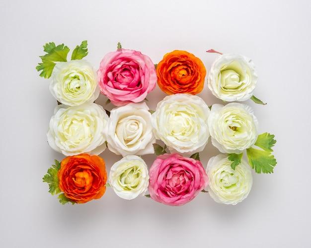 Mise en page créative de belles fleurs roses sur blanc.