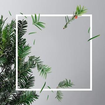 Mise en page créative faite avec des branches de sapin sur fond clair avec cadre. concept minimal de noël nouvel an.