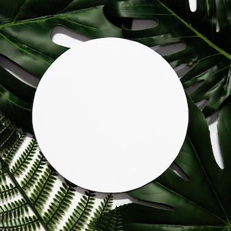 Mise en page créative faite de feuilles tropicales avec cadre de papier blanc vide.