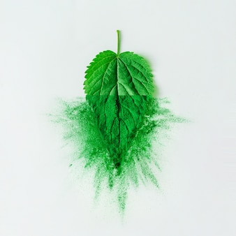 Mise en page créative avec feuille verte et poudre ou épice sur un mur de table lumineux. concept minimal d'aliments naturels sains. mise à plat.