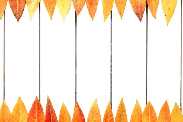 Mise en page créative de feuilles d'automne colorés. appartement poser sur un fond en bois blanc.