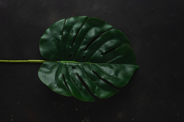 Mise en page créative avec des feuilles de palmiers tropicaux verts sur fond noir.