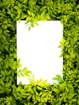 Mise en page créative de fleurs et feuilles avec note de carte papier