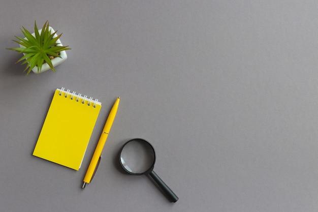 Mise à plat d'affaires avec loupe stylo bloc-notes et plante succulente sur table grise