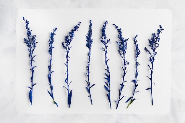 Mise à plat de l'arrangement floral beautful