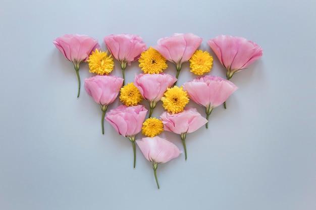 Mise à plat d'un assortiment de fleurs magnifiques
