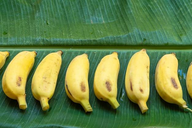 Mise à plat de bananes jaunes sur une feuille de bananier vert. nourriture écologique.