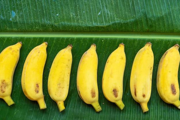 Mise à plat des bananes jaunes sur une feuille de bananier verte. eco food