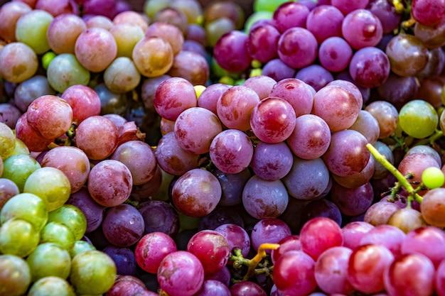 Mise à plat, beaucoup de raisins biologiques, vin concept, récolte et jus, gros plan