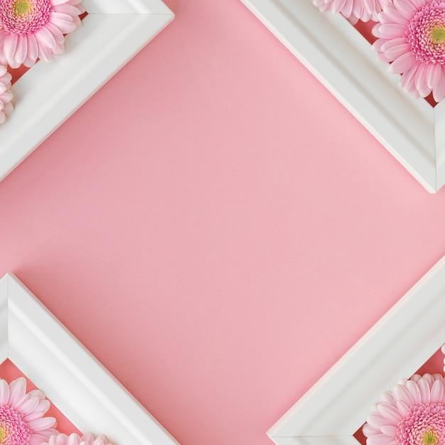 Mise à plat de cadres blancs avec des gerberas de fleurs roses