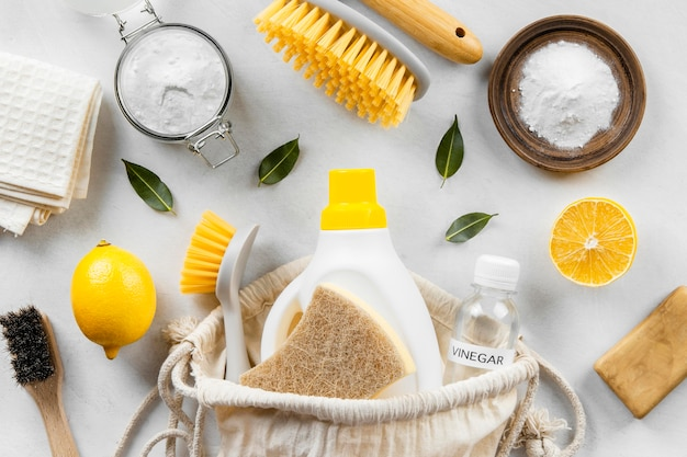 Mise à plat de la collection de produits de nettoyage écologiques avec du citron et du bicarbonate de soude