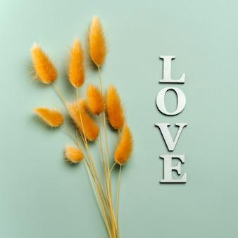 Mise à plat créative du mot amour sur fond de couleur douce avec des plantes naturelles.