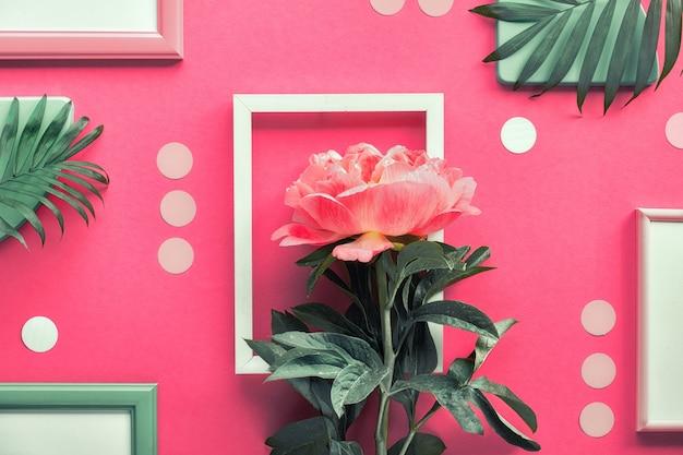 Mise à plat créative avec pivoine corail et feuilles de palmier exotiques sur fond géométrique abstrait avec des cadres