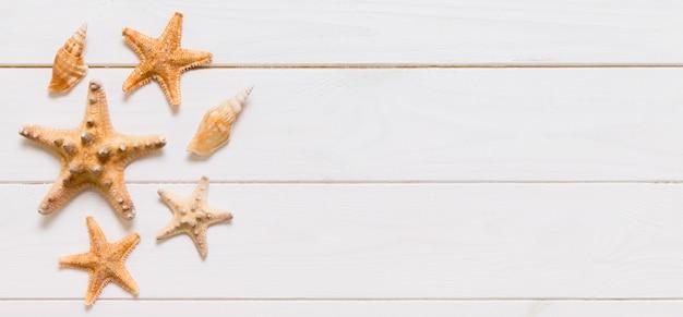Mise à plat de divers coquillages et étoiles de mer sur une table en bois blanc
