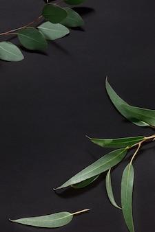 Mode de vie branché avec des feuilles vertes décorées sur la table