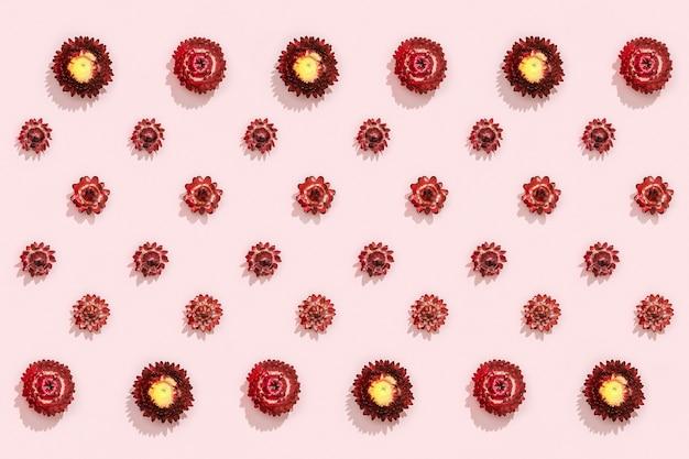 Modèle avec bourgeon en gros plan de fleurs rouges sèches, petites fleurs sur rose. pose plate fleurie naturelle.
