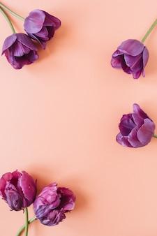 Modèle d'espace de copie de cadre de guirlande ronde. fleurs de tulipes violettes sur corail vivant
