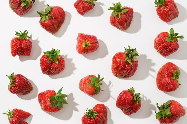 Modèle de fraise moche bio avec ombre ensoleillée sur fond blanc. vue d'en-haut. concept de produits biologiques.