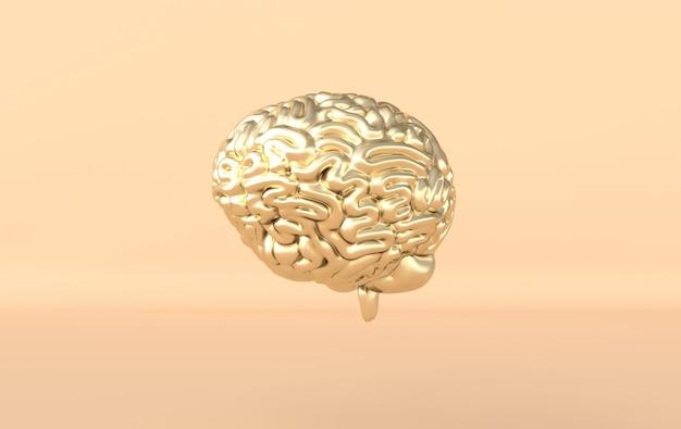 Modèle d'illustration de rendu du cerveau