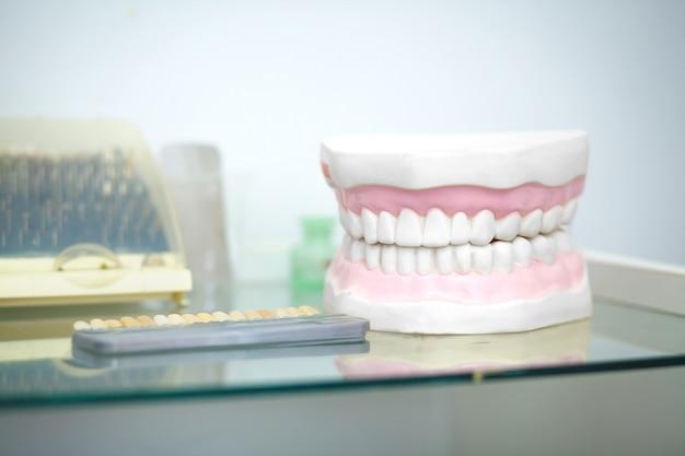 Modèle de mâchoire dentaire chez le dentiste