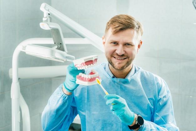 Un modèle d'une mâchoire humaine avec des dents et une brosse à dents dans la main du dentiste.